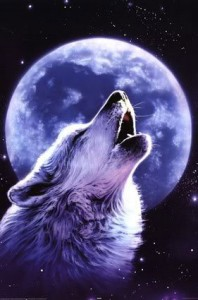 lone wolf II